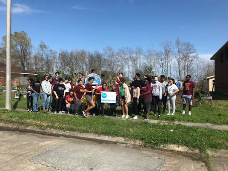 Sowing Seeds of Change: Loyola University  Homecoming Service Day