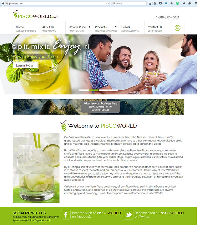 Branding_PiscoWorld_Website-Design.jpg