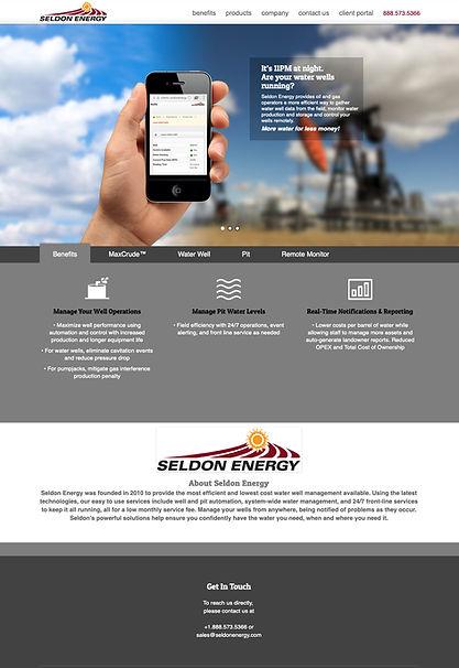 SeldonEnergy_webdesign.jpg