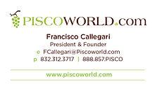 branding-piscoworld_business-cards2.jpg
