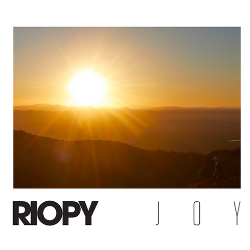 Joy (Digital Download)