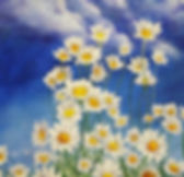 Daisies P.jpg