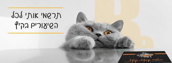 תרשמי אותי לכל השיעורים בקיץ חתול