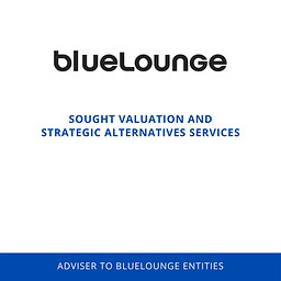 Bluelounge Valuation.png