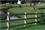 pasture_stream.jpg