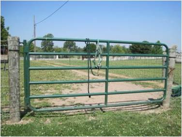Large green pasture gate