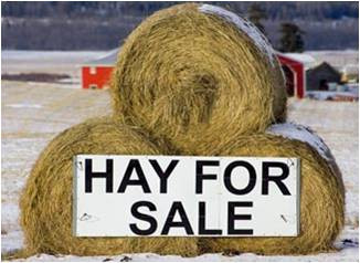 Round bales stacked for sale