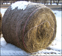 Round bale wrapped in twine