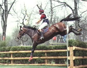 Horse and rider landing a jump