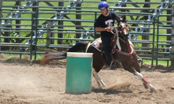 Gymnkana horse and rider
