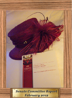 001 The book plus hat