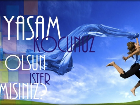 Yasam Kocu Danismanlik
