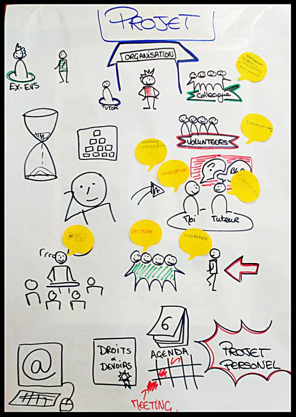 Facilitation visuelle débat pétale 2