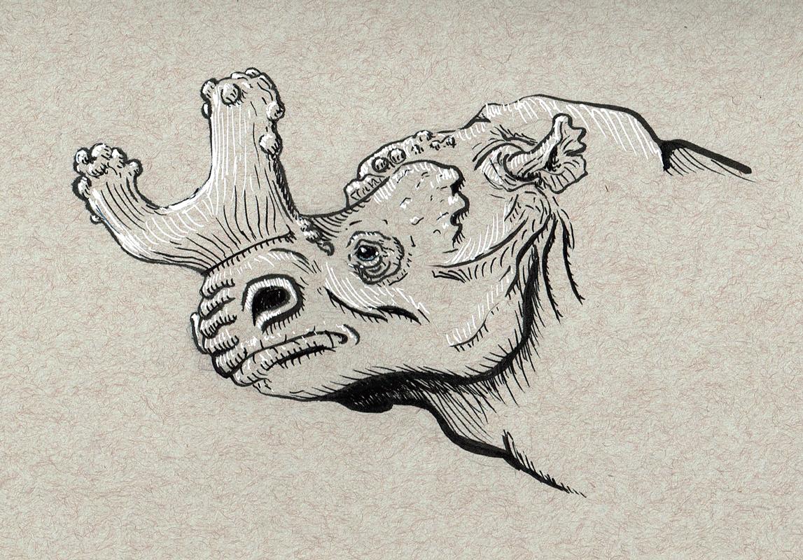 Prehistoric Rhino