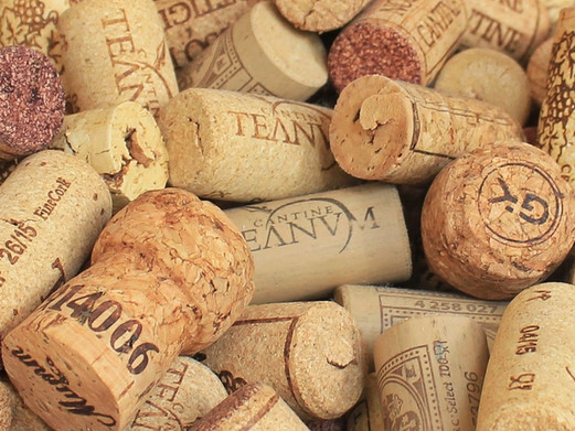 Discover the many secrets of Portuguese cork