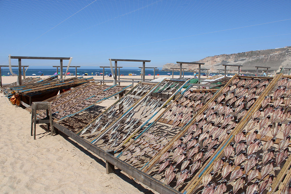 Wooden racks on Nazaré beach used for drying fish traditionally
