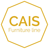 CAIS Logo solid white (1).png