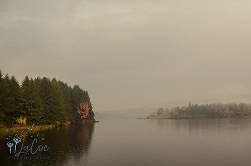 Foggy Hills Creek