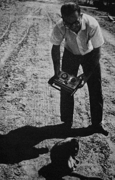 Rodolfo Walsh monos en Corrientes documental rastros de Rodolfo Walsh en el nordeste escritos sobre Corrientes Chaco y Misiones Leprosario Laguna Ibera