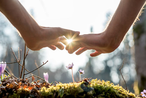 hand-covering-flowers-at-the-garden-with