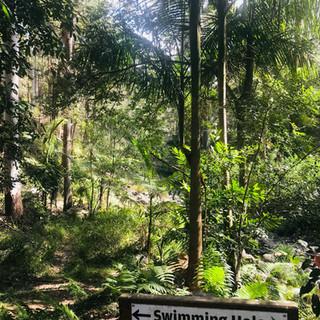 Back to Nature Retreats Swimming Hole