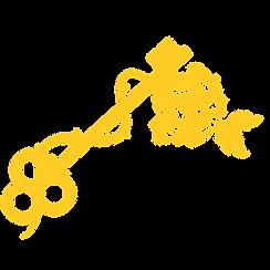 keys separated-02.png
