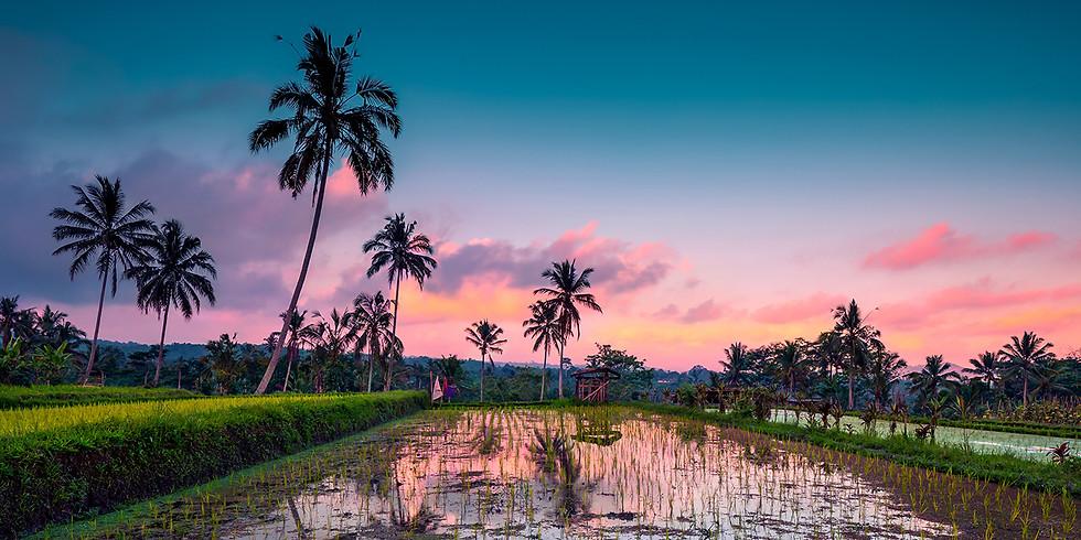 Cancelled due to Covid 19. Seraya East Coast Bali Yoga Retreat