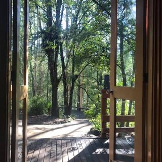 dungog yoga and hiking retreat.JPG
