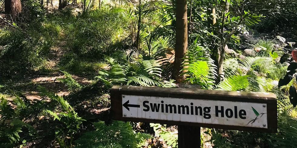 Sine Cera Rainforest Retreat - Northern NSW