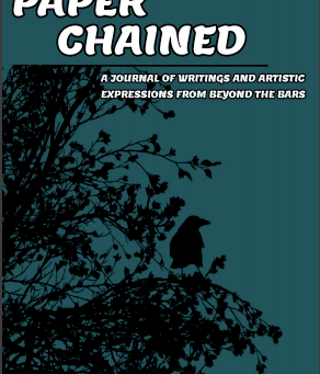 Introducing the new editor of Paper Chained
