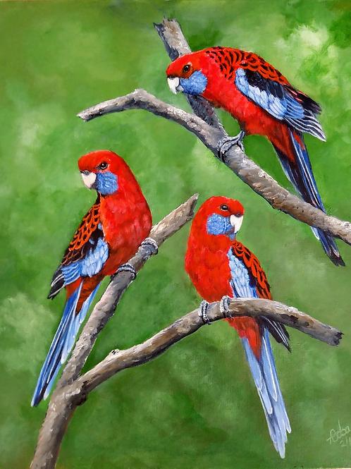 Crimson Trio