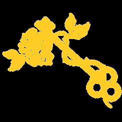 keys separated-03.png
