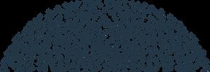 Texture_Dots_half.png