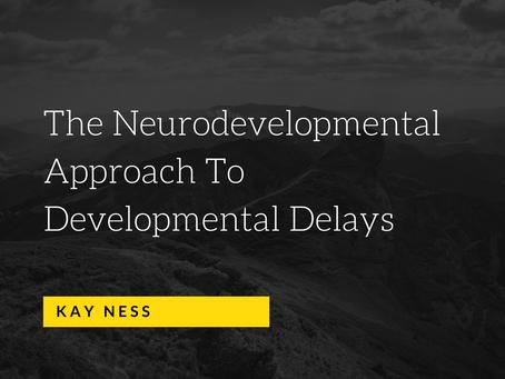 The Neurodevelopmental Approach To Developmental Delays