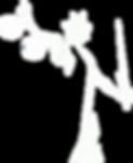 Logo_temporário.png