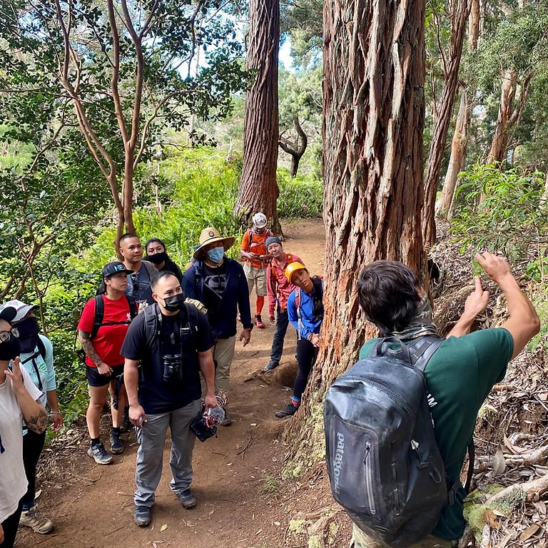 Mauka Missions  (Manoa Cliffs) Beginner  *Muddy Conditions*  6/26/21