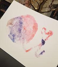 placenta prints.jpg