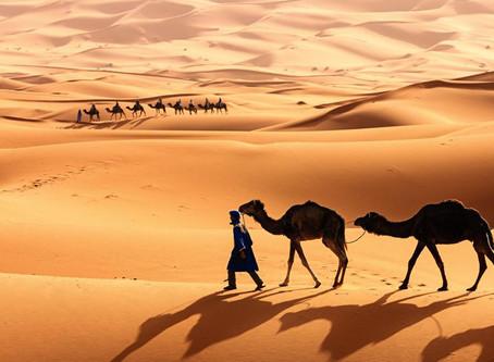 ¿Se puede hacer llover en el Sahara con plantas de energía solar y eólica?