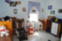 Saalo Cat 1.jpg