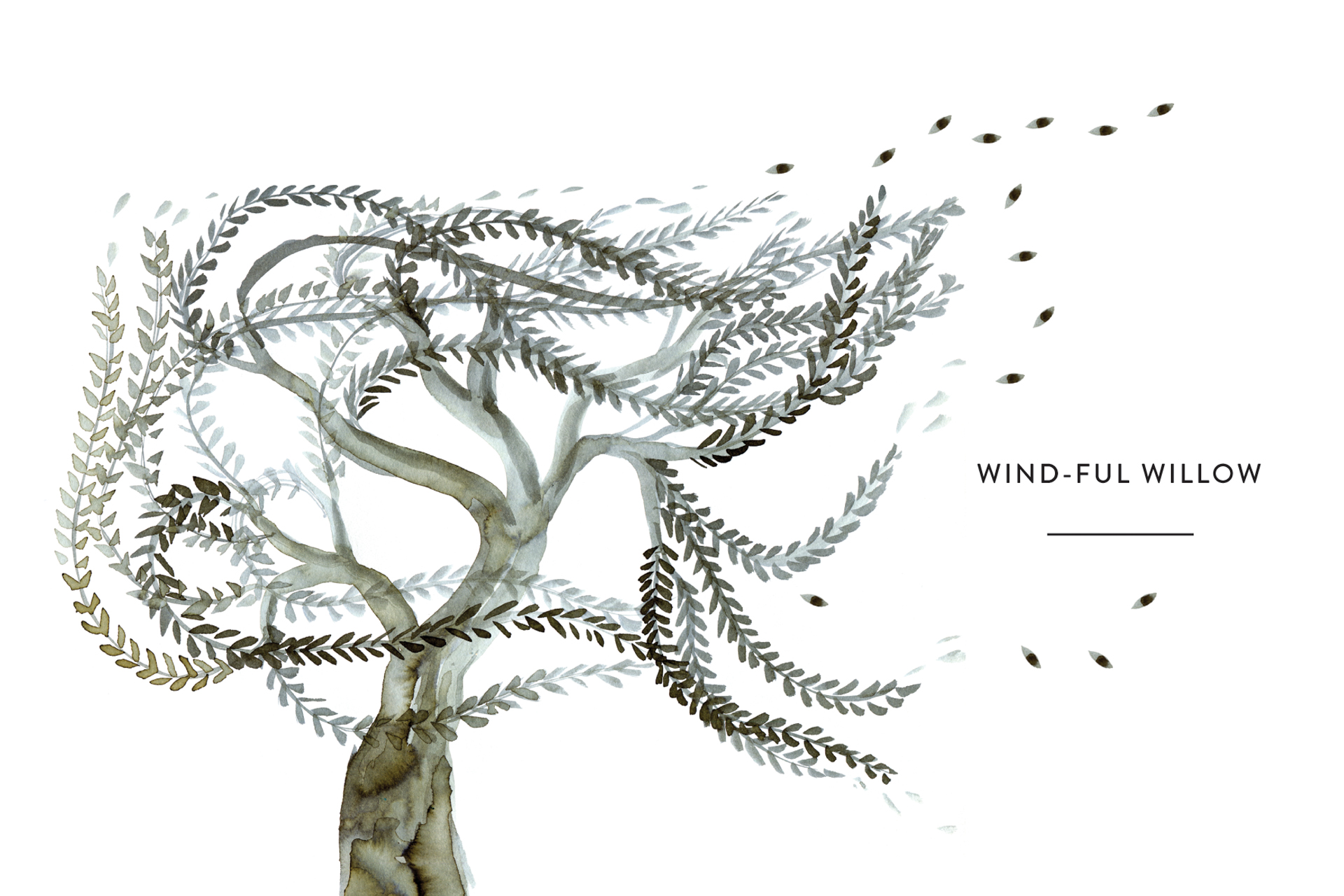 Windful Willow