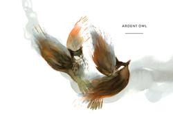 Ardent owl