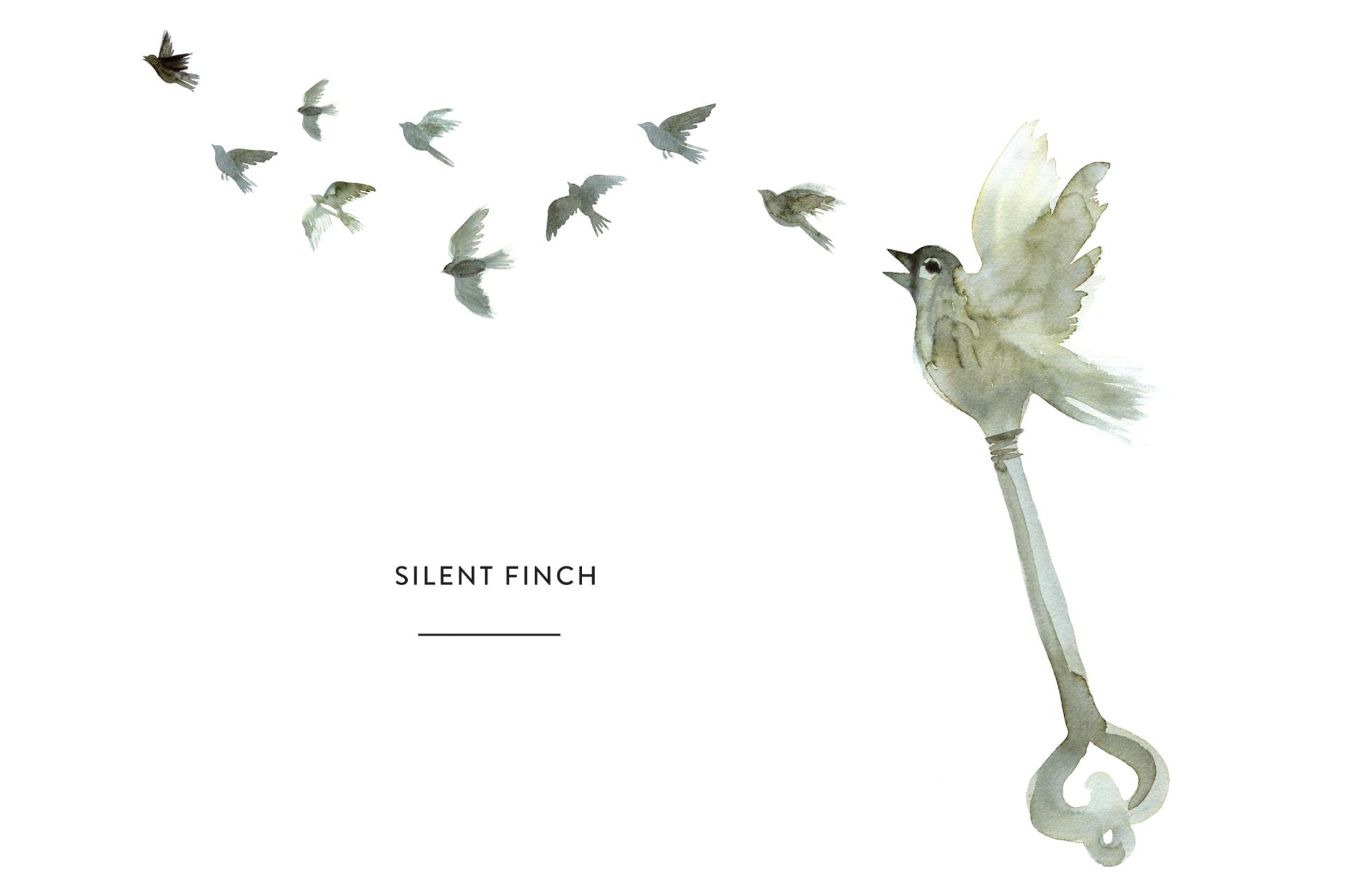 Silent Finch