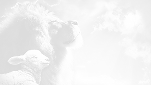 lion-3959780_960_720_edited_edited.png