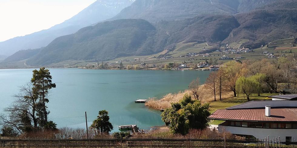 Radtour ins Überetsch und zum Kalterer See - Gita nell´Oltradige fino al lago di Caldaro