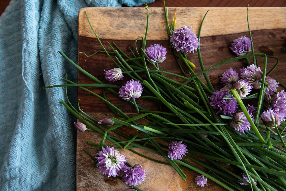 These lavender-colored flowers are not only beautiful, but delicious!!