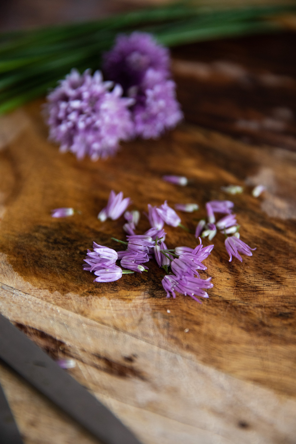 These lavender-colored flowers are not only beautiful, but EDIBLE and DELICIOUS!!