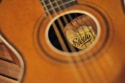 Stella gitaar 1929