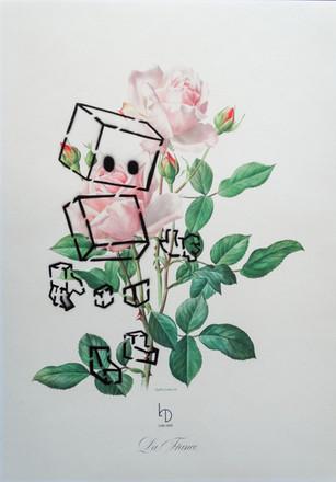 Robo Print 01 - A3