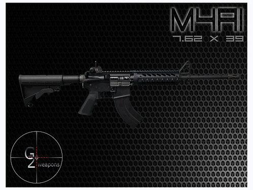 M4AK (Govt)