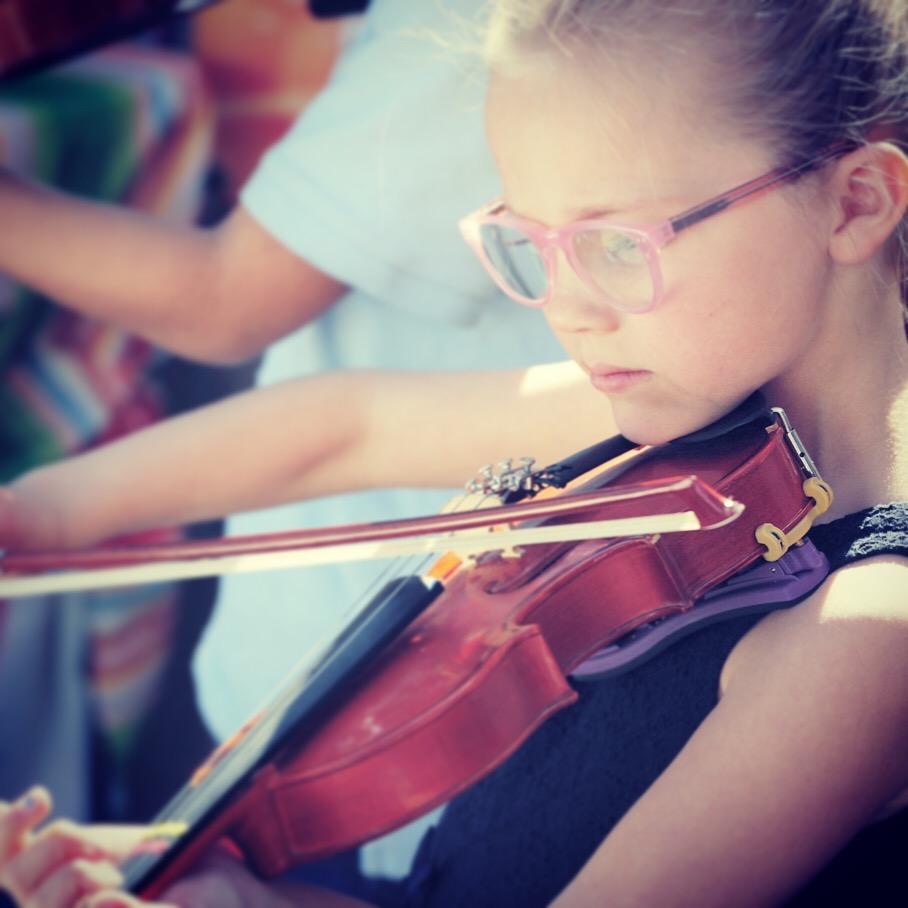 website violin 2